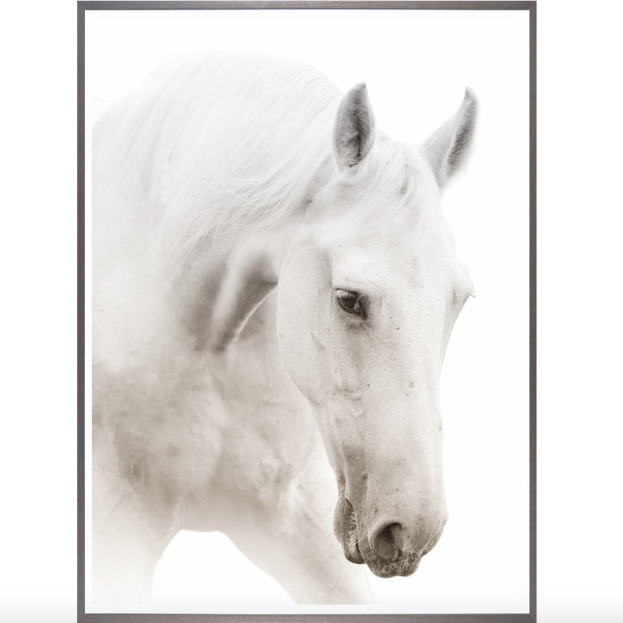 """Argent Cheval"" Framed Art Print"