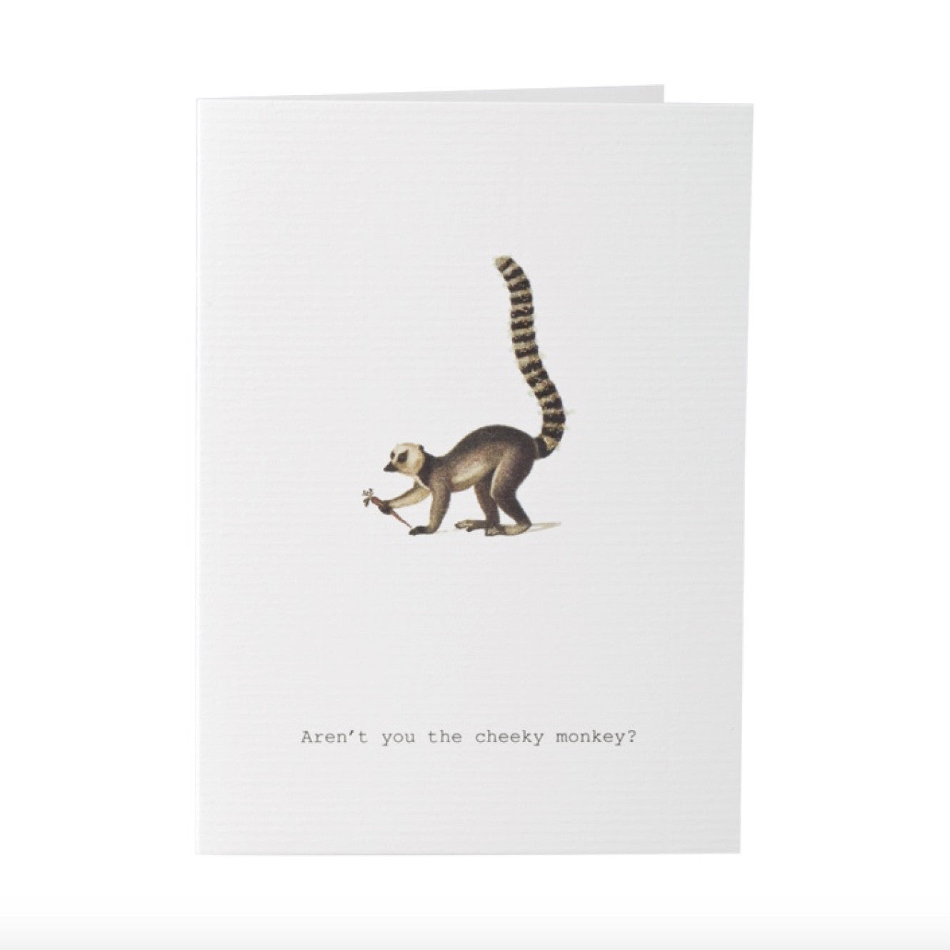 "Tokyo Milk ""Aren't you the Cheeky Monkey"" Greeting Card, TM-Tokyo Milk, Putti Fine Furnishings"