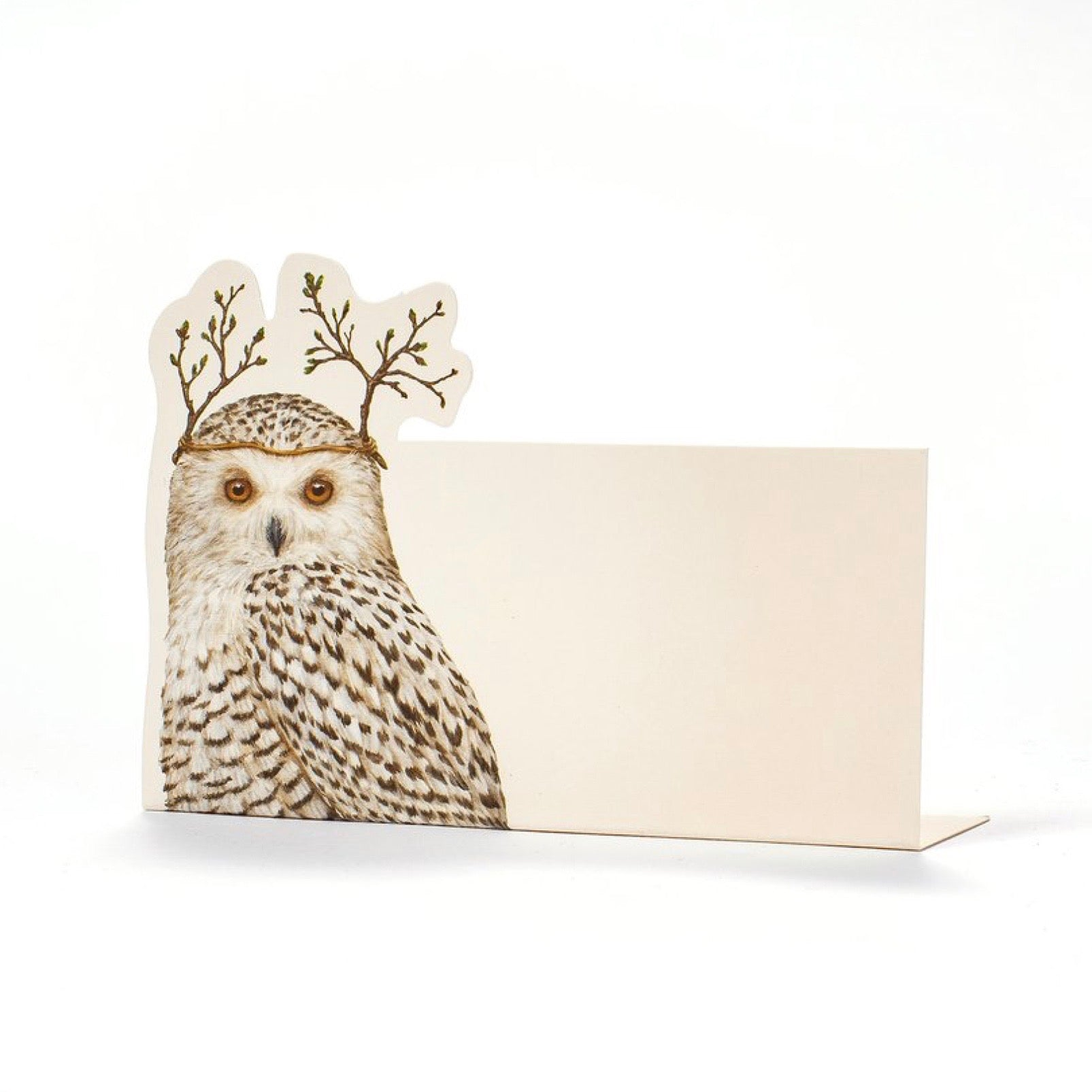 Hester & Cook Winter Owl Placecards | Putti Celebrations & Partyware