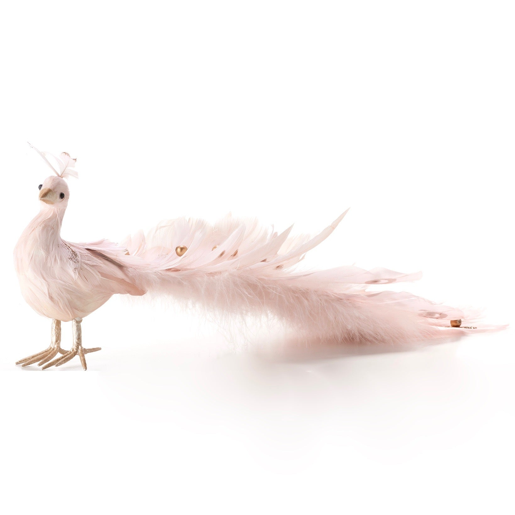 Blush Pink Feather Peacock | Putti Christmas Celebrations