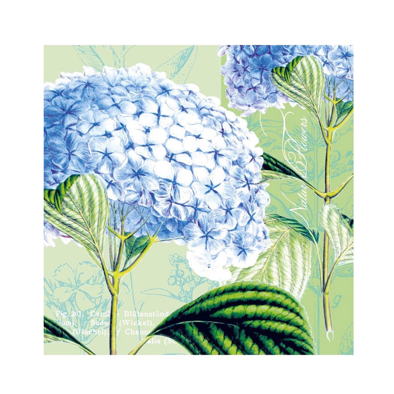 Blue Hydrangea Paper Napkins - Beverage | Putti Party Supplies