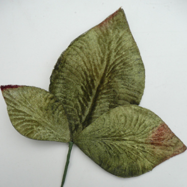 Miss Rose Sister Violet Velvet Leaves - Mid Green