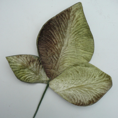 Miss Rose Sister Violet Velvet Leaves - Shaded Green