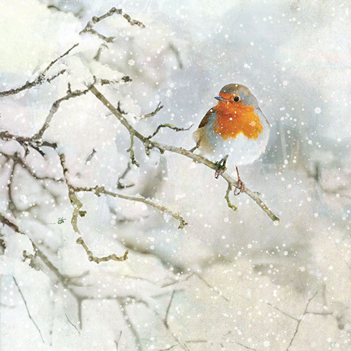 """Robin Red Breast"" Christmas Card, ID-Incognito Distribution, Putti Fine Furnishings"