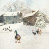 """Farmyard Ducks"" Christmas Card, ID-Incognito Distribution, Putti Fine Furnishings"