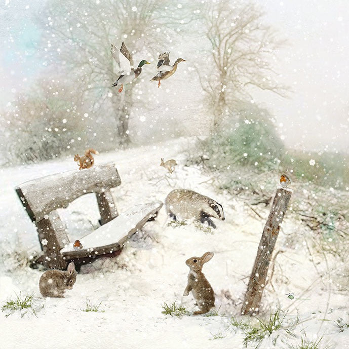 """Winter Bench"" Christmas Card -  Christmas - Incognito - Putti Fine Furnishings Toronto Canada"