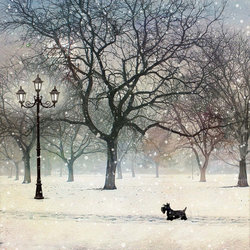 """Scottie Dog"" Christmas Card, ID-Incognito Distribution, Putti Fine Furnishings"