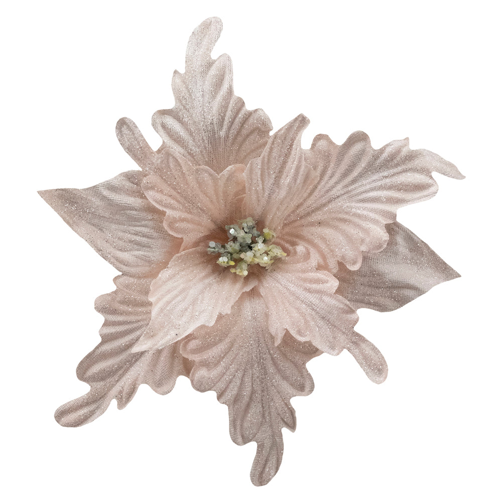 Blush Pink Velvet Poinsettia with Clip | Putti Christmas Decorations