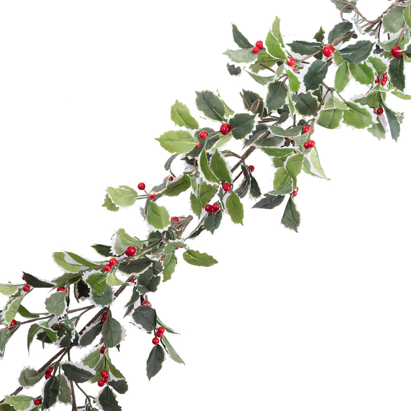 Variegated Holly with Red Berries Garland | Putti Christmas Decorations