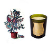 Cire Trudon Candle - Pondichery - Default Title Candles - Cire Trudon - Putti Fine Furnishings Toronto Canada - 1