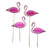 """Truly Flamingo"" Food Picks, TT-Talking Tables, Putti Fine Furnishings"