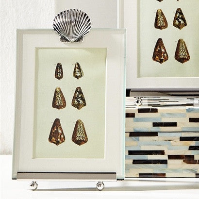 "Tozai ""Scallop Shell"" Easel Photo Frame-Accessories-TH-Tozai Home-Putti Fine Furnishings"