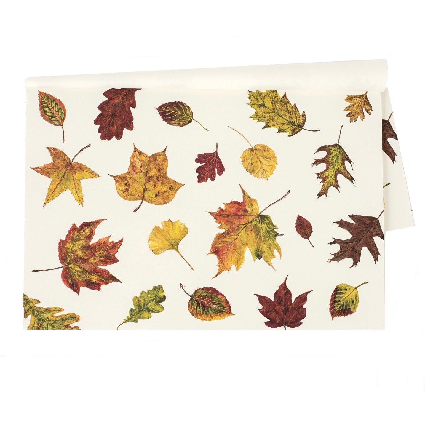 e2765d5d8d2ec Hester & Cook Fall Foliage Paper Placemats - Putti Celebrations & Partyware  Canada