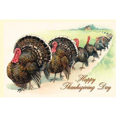 Turkeys on Parade Greeting Card