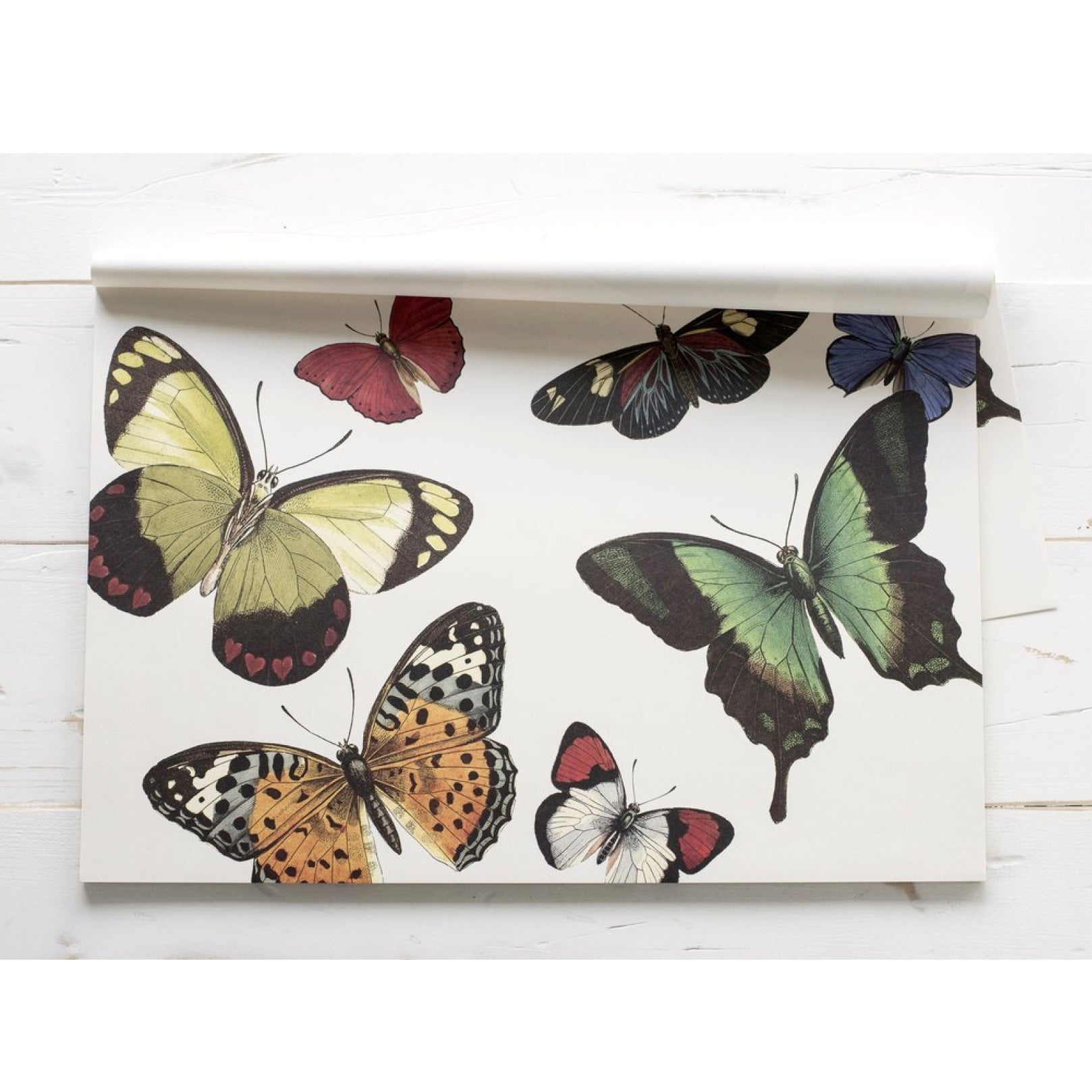 Hester & Cook Butterflies Placemats  |  Putti Celebrations & Partyware