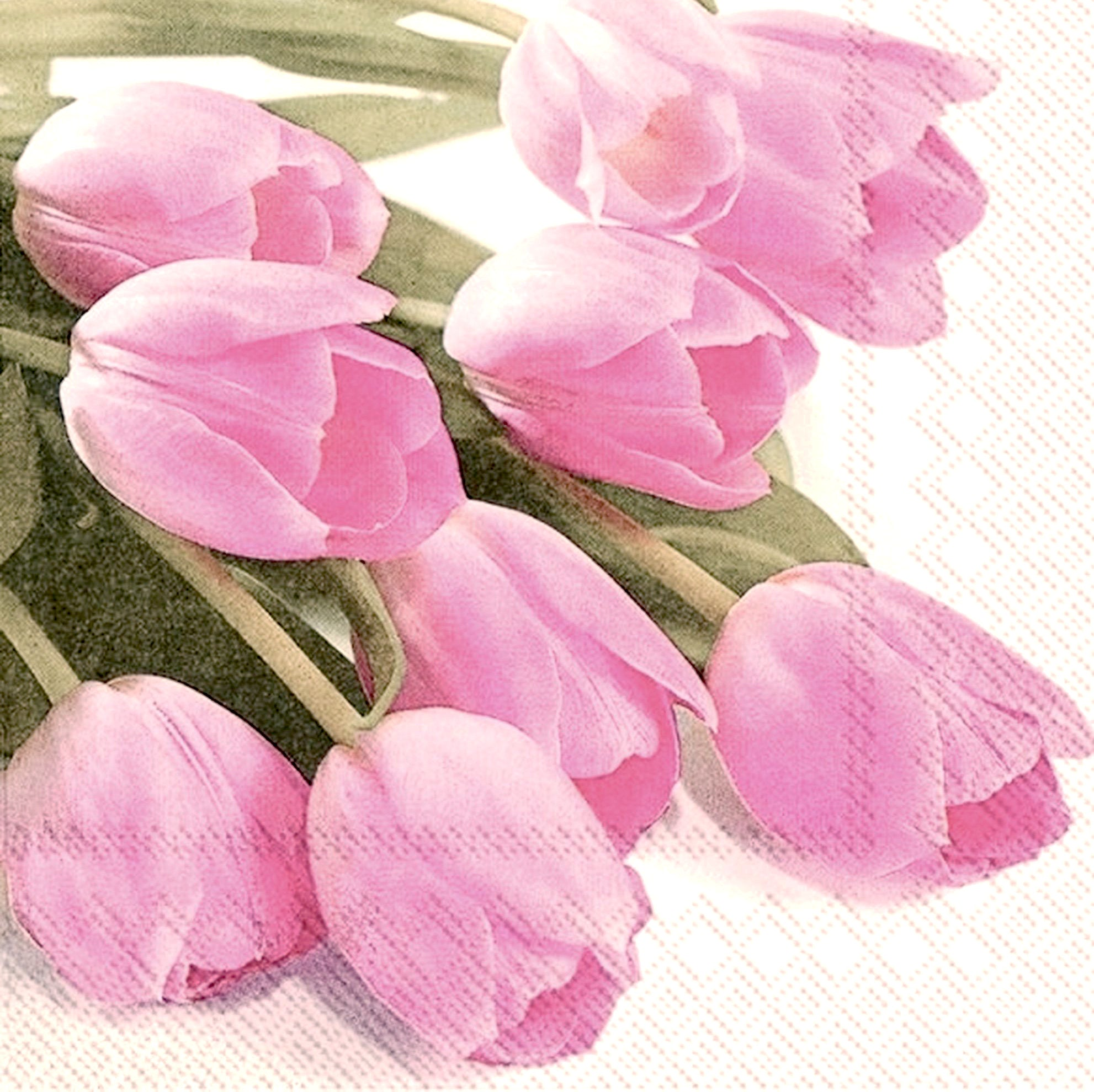 Pink Tulips Paper Lunch Napkin | Putti Fine Furnishings