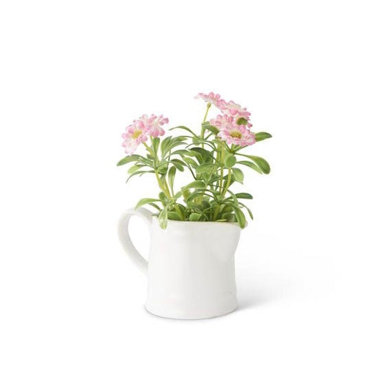 Pink Daisies in White Ceramic Pitcher