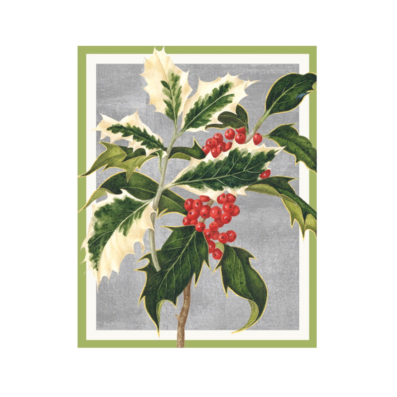Holly Boxed Christmas Cards | Putti Christmas