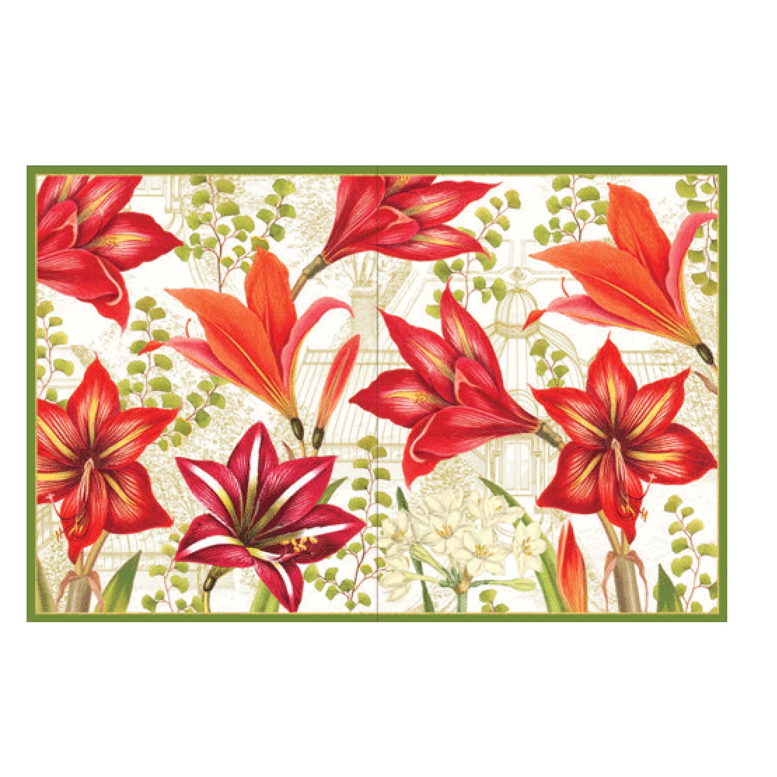 Amaryllis and Conservatory Boxed Christmas Cards | Putti Celebrations