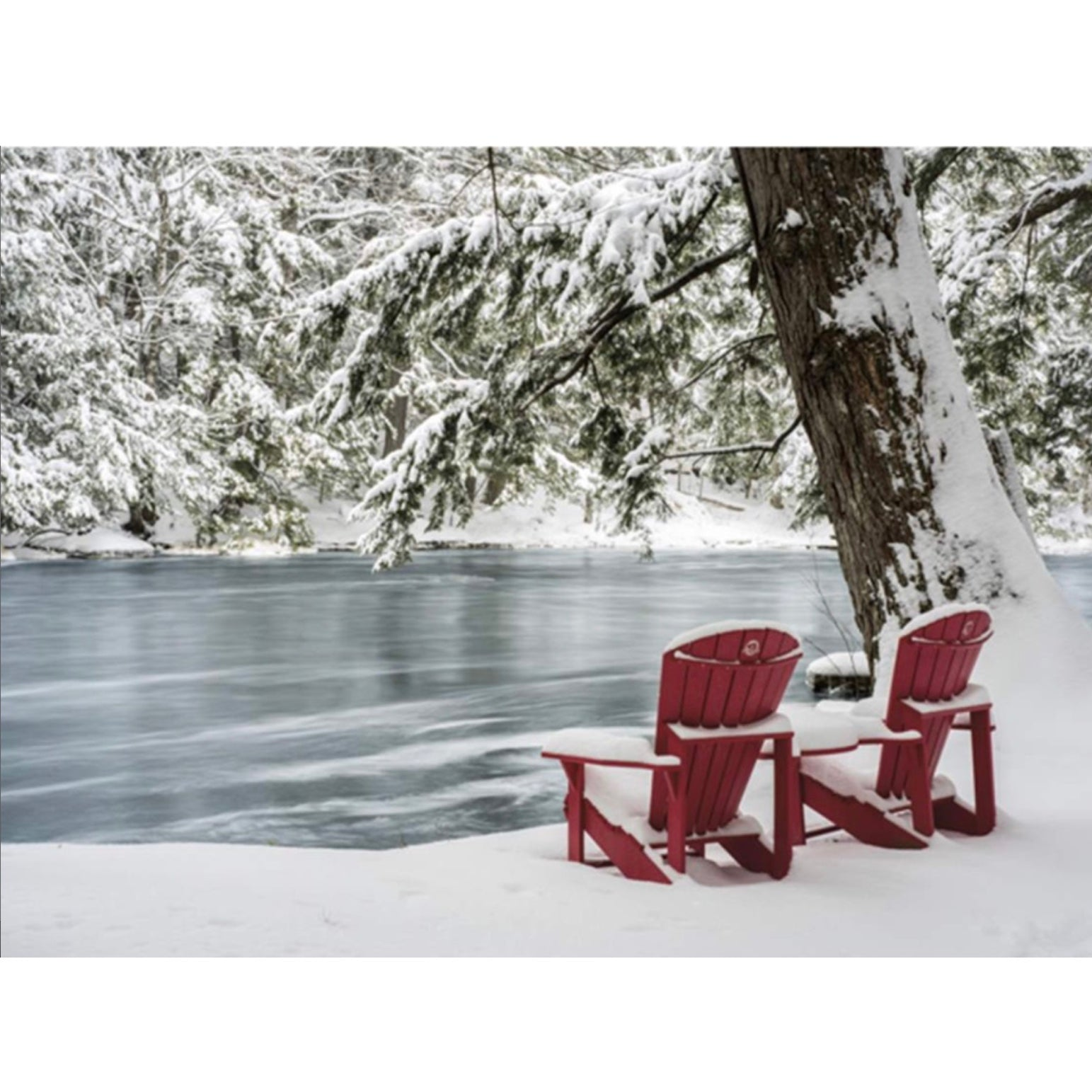 Muskoka Chairs Boxed Christmas Cards | Putti Christmas Celebrations