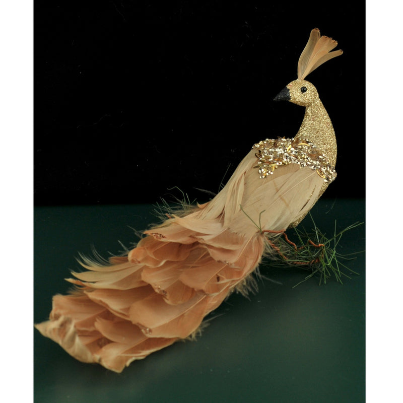 Champagne Gold Feathered Peacock with Clip | Putti Christmas
