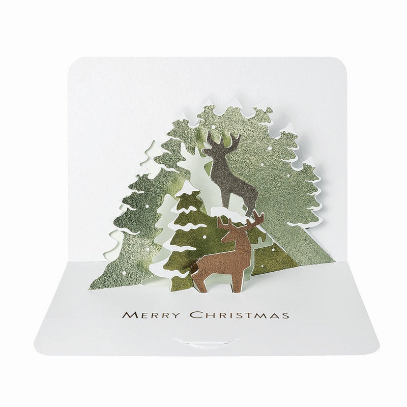 Forest Pop Up Boxed Christmas Cards | Putti Christmas Celebrations
