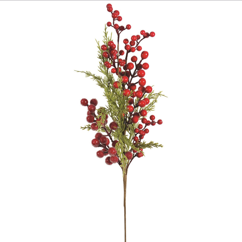 Cedar and Red Berry Pick | Putti Christmas Decorations