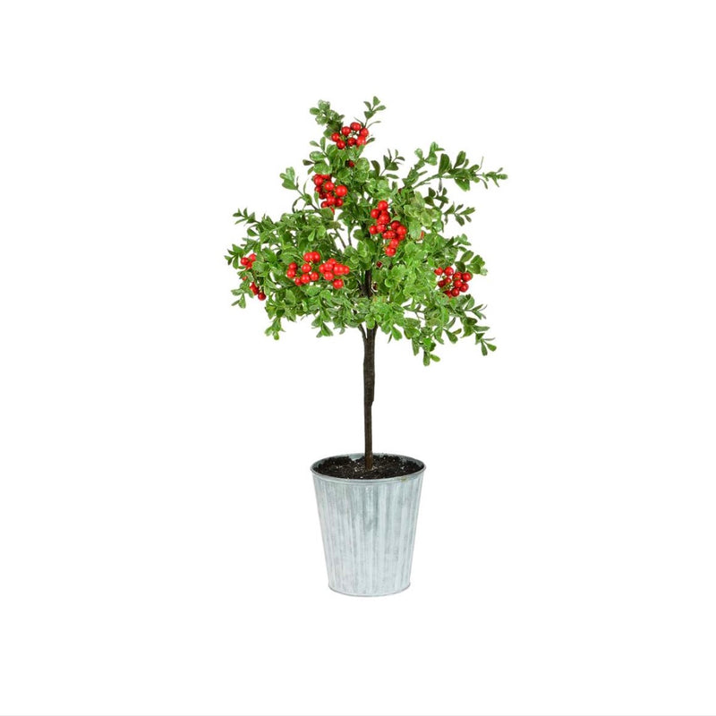Boxwood with Red Berries Topiary in Metal Pot | Putti Christmas