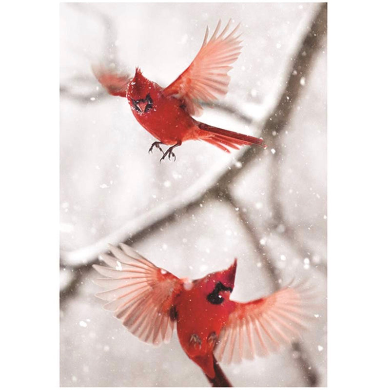 Pair of Cardinals Boxed Christmas Cards