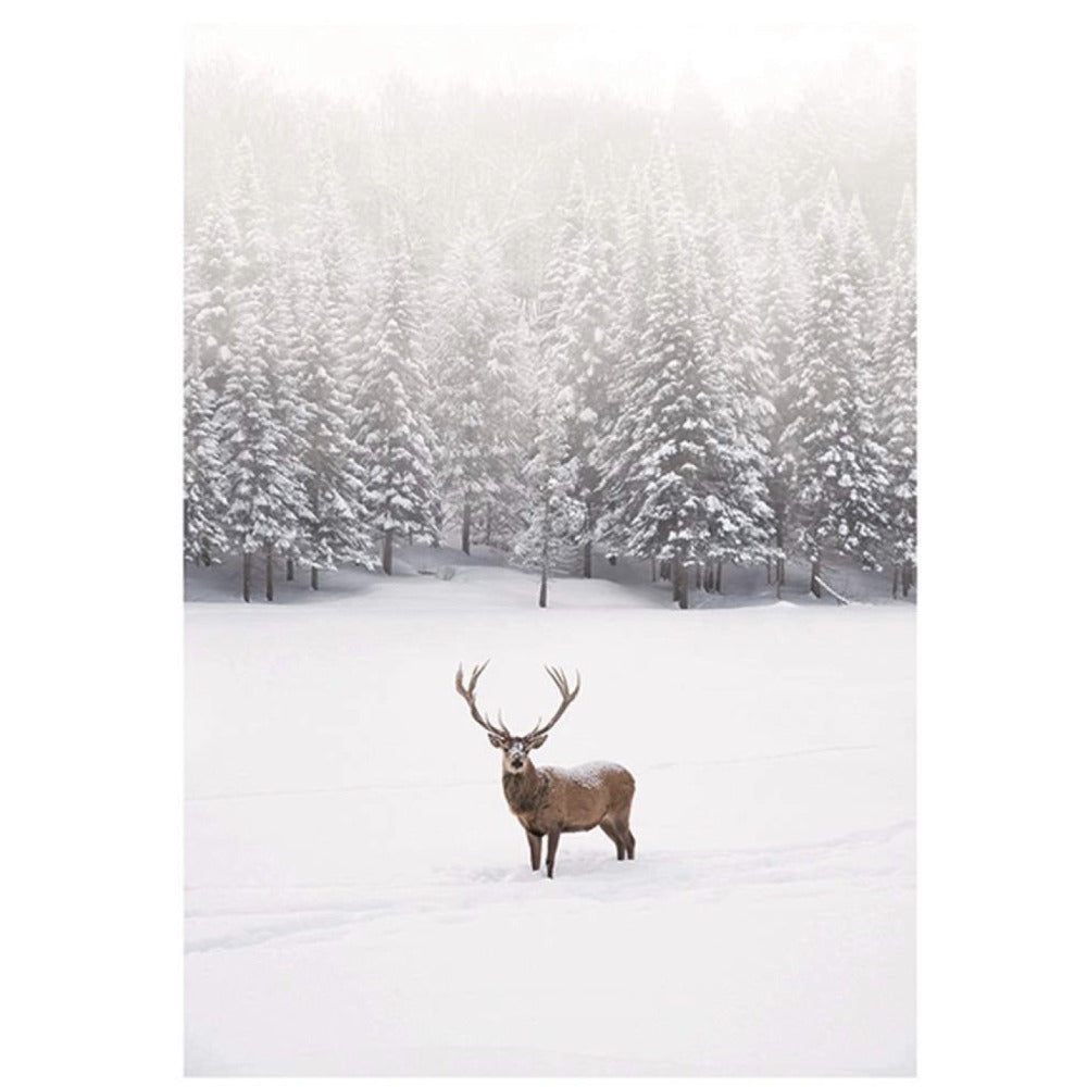 Deer in the Snow Boxed Christmas Cards