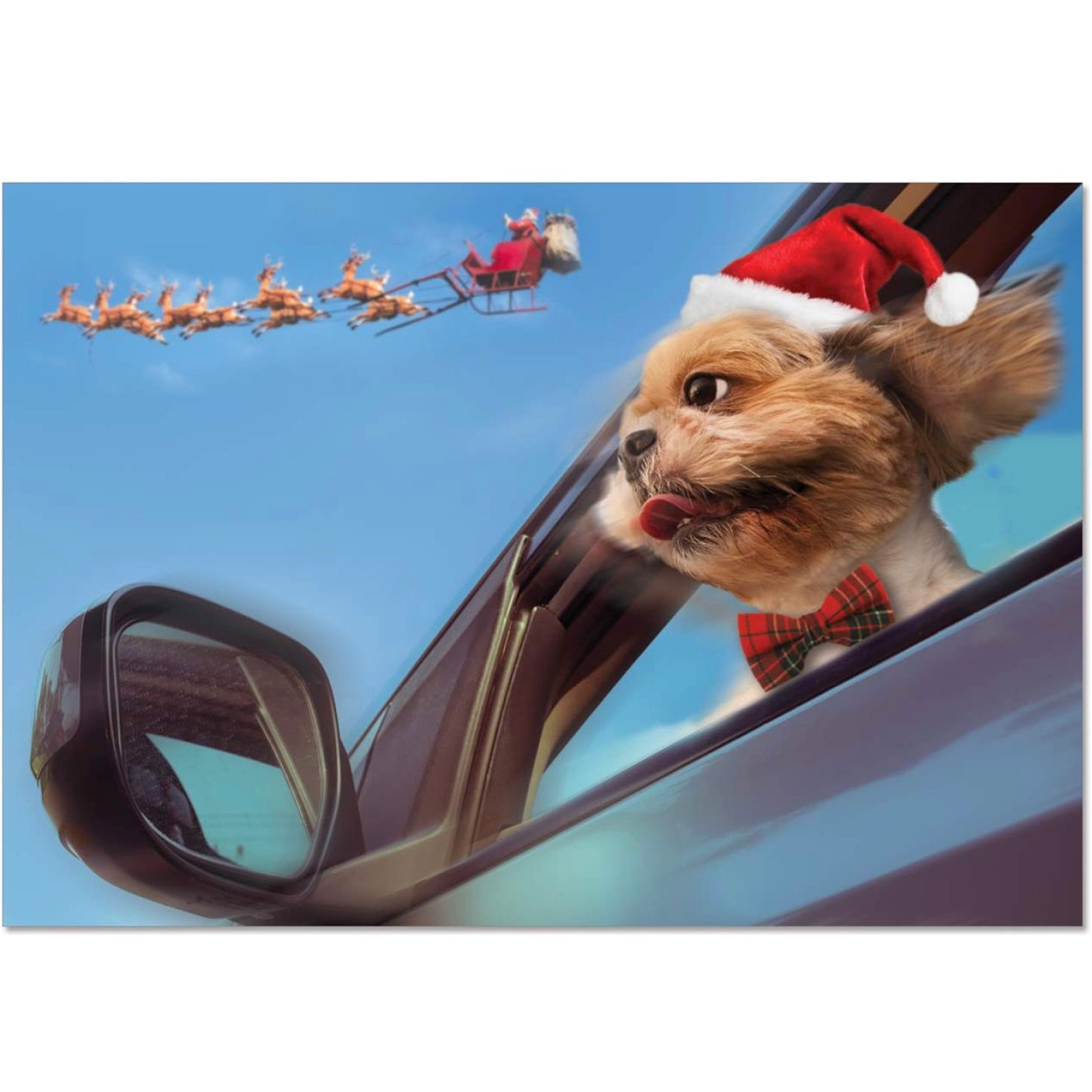 Dog with Santa's Sleigh Christmas Card