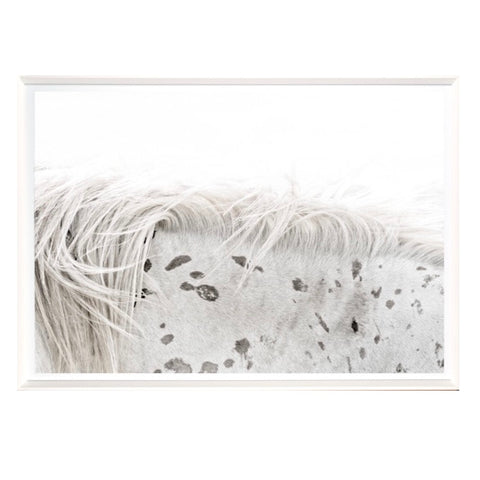 """Appaloosa Detail"" Framed Print-Artwork-Cel Arts Studio-Putti Fine Furnishings"