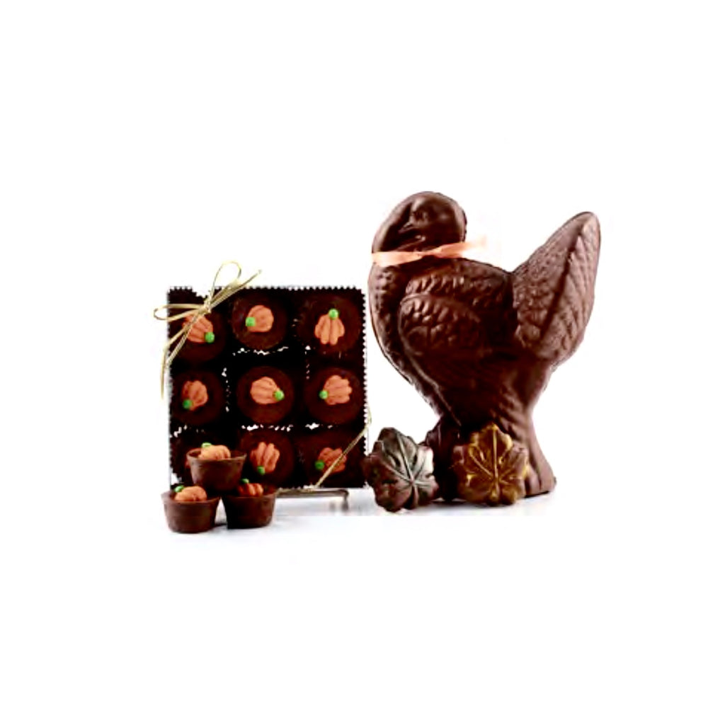 Pumpkin Chocolate Savannahs-Chocolates-TCF-The Chocolate Factory-Putti Fine Furnishings