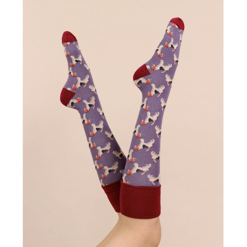 Powder Fox Terrier Boot Socks - Lavender | Putti Fine Fashions