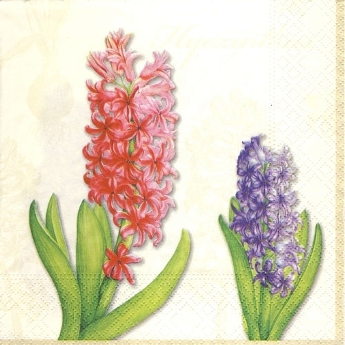 Hyacinth Cream Paper Napkins Lunch | Putti Spring Easter Party Supplies