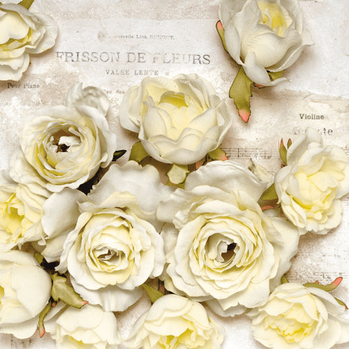 Frisson de Fleurs Paper Napkins - Lunch | Putti Party Supplies