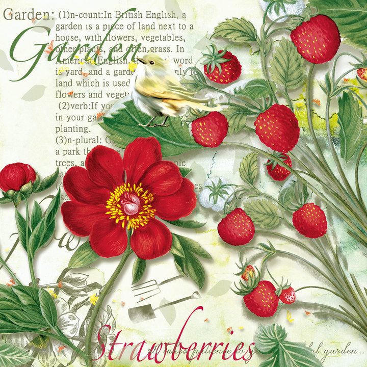 Strawberry Garden Paper Napkins - Lunch | Putti Party Supplies