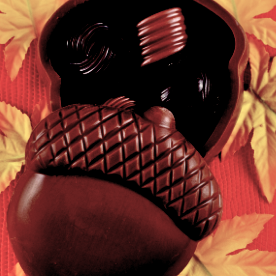 Chocolate Acorn Box