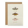 """To a very special friend"" Moths Greeting Card 