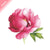 Tattly Temporary Tattoos - Scented Pink Peony