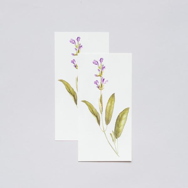 Tattly Temporary Tattoos - Scented Sage, TTT- Tattly Temporary Tattoos, Putti Fine Furnishings
