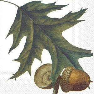 Acorns - Lunch Paper Napkin