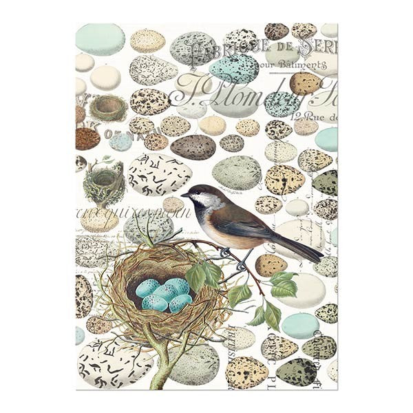 Nest & Eggs Kitchen Towel