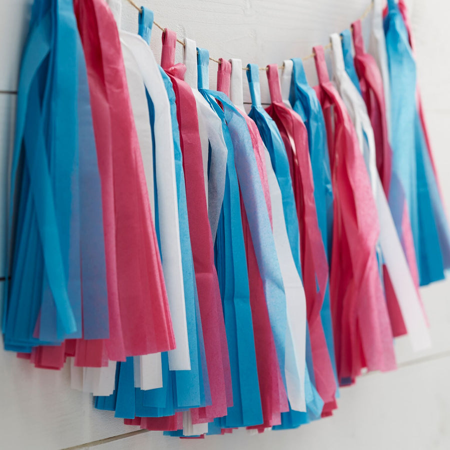 Little Lady or A Mini Mister Pink White and Blue Tassel Garland