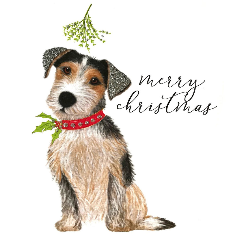 Jack Russel Christmas Greeting Card | Putti Celebrations