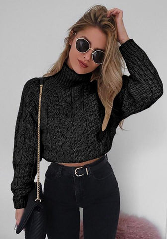 Black Plain Crop High Neck Long Sleeve Fashion Pullover Sweater
