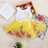 Kid Girl Princess Dress Toddler Sleeveless Dress Tutu Lace Flower Bow Dresses Pageant Dress Clothes