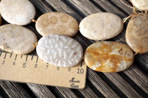 Indonesian Agatized Fossil Coral 22-29mm oval beads (ETB00586)