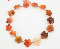 Carnelian 20-23mm flower beads (ETB01250)