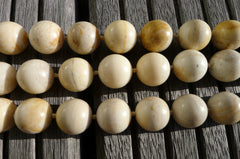 (SPL00027) Petrified Honey Palm Wood 17-18mm round beads